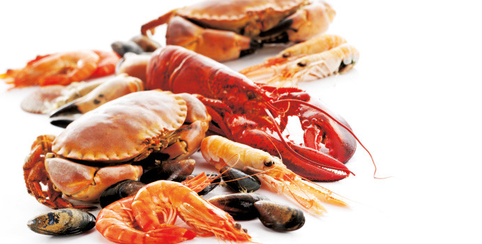 Latest Seafood News