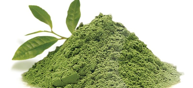 What is Matcha Tea Powder: and why you need it